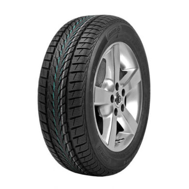 205/55R16 94H XL WINTERSTAR 4 POINTS  (TSZ097)